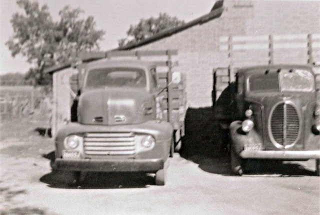 Ralph Moyle's first truck, on the right, was a 1940 Ford. Next to it on the left is the third truck that Ralphpurchased, a 1950 Ford.