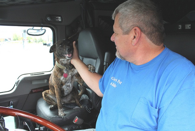 Izzy gets attention from his owner, David Binz, at the wheel of his Kenworth T660. Binz has hauled 12 dogs and two cats since becoming a volunteer pet transporter.