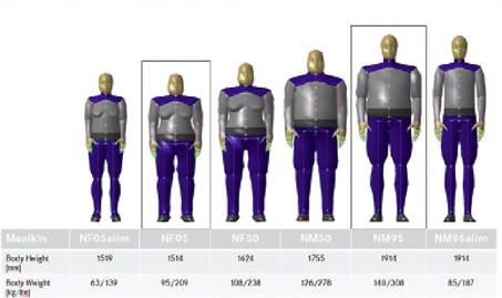 DTNA engineering uses a range of digital mannequins developed from astatistical analysis of measurements taken from actual truck drivers.