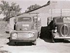 Ralph Moyle's first truck, on the right, was a 1940 Ford. Next to it on the left is the third truck that Ralph purchased, a 1950 Ford.