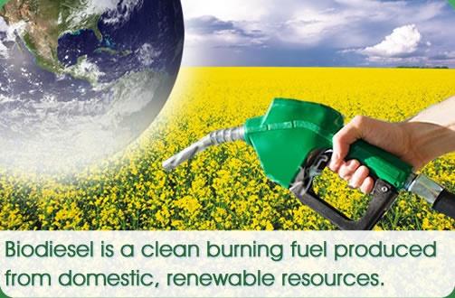 Image: National Biodiesel Board