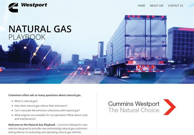 Screenshot of Natural Gas Playbook website