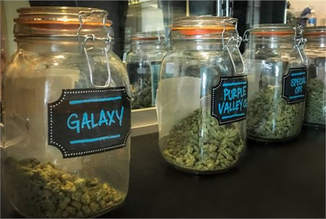 Photo of retail marijuana courtesy of HLDI.