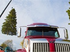 Image of 5700XE being loaded up with the Michigan state capital Christmas tree courtesy of Western Star.