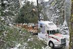 The 2011 U.S. Capitol Christmas Tree, a 65-foot white fir, leaves the Stanislaus National Forest aboard the custom-decorated Mack Pinnacle model, starting its journey through California and across the country to Washington, D.C.
