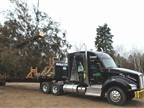 Last year's Christmas tree truck, a Kenworth T880 with 52-inch