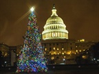 The 2016 U.S. Capitol Christmas Tree, an 80-foot Englemann spruce adorned with thousands of LED lights and about 4,000 ornaments hand-made by Idaho children, lights up the West Lawn of the Capitol.