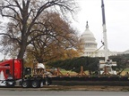 The tree is being set up on the west lawn of the U.S. Capitol Grounds.