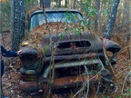 My girlfriend found this old truck in the woods while roaming around