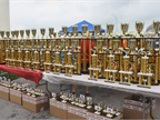 Super Truck Beauty Contest trophies lined up ready to award.