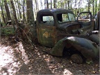 Old trucks are everywhere in the woods at Old Car City. Photo: