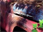 Ford fender detail. Photo: Christina Hamner