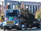 The 74-foot Lutz spruce arrived Friday, Nov. 20, in Washington, D.C.,